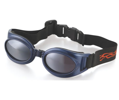 Goggles Spectacles