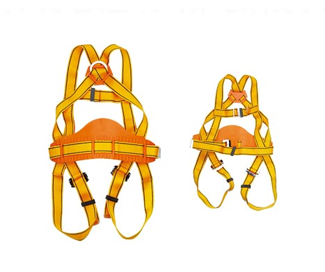 Protecta Harness